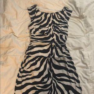 Macys Bisou Bisou Zebra Sleeveless Dress Size 6